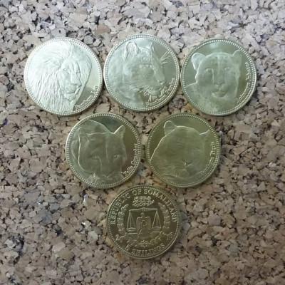 """Набор из 5 монет 2016 г.  Сомалилэнд """"Хищники семейства кошачьих""""."""