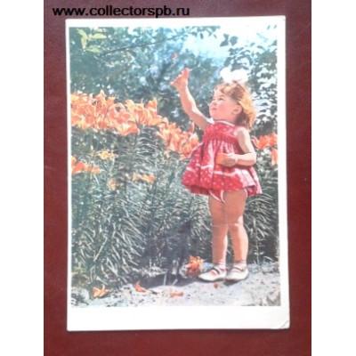"""Открытка СССР 1962 год """"Среди цветов""""."""